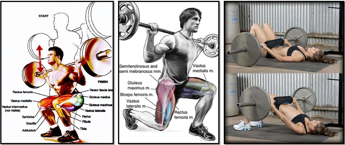 многосуставные упражнения для грудных мышщ