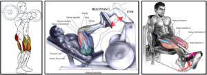 лучшие упражнения для мышц передней поверхности бедра