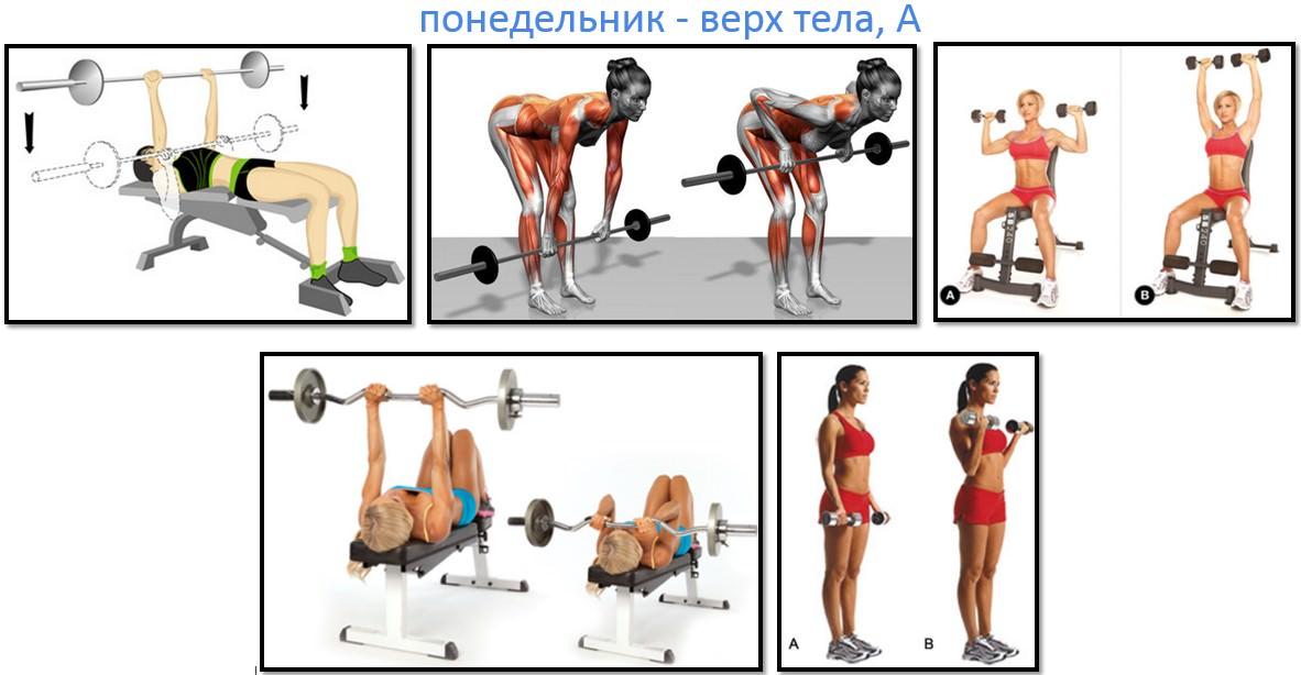 Программа тренировок для девушек, верх тела А