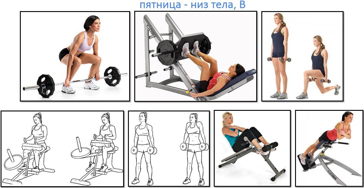 Программа тренировок для девушек, низ тела В