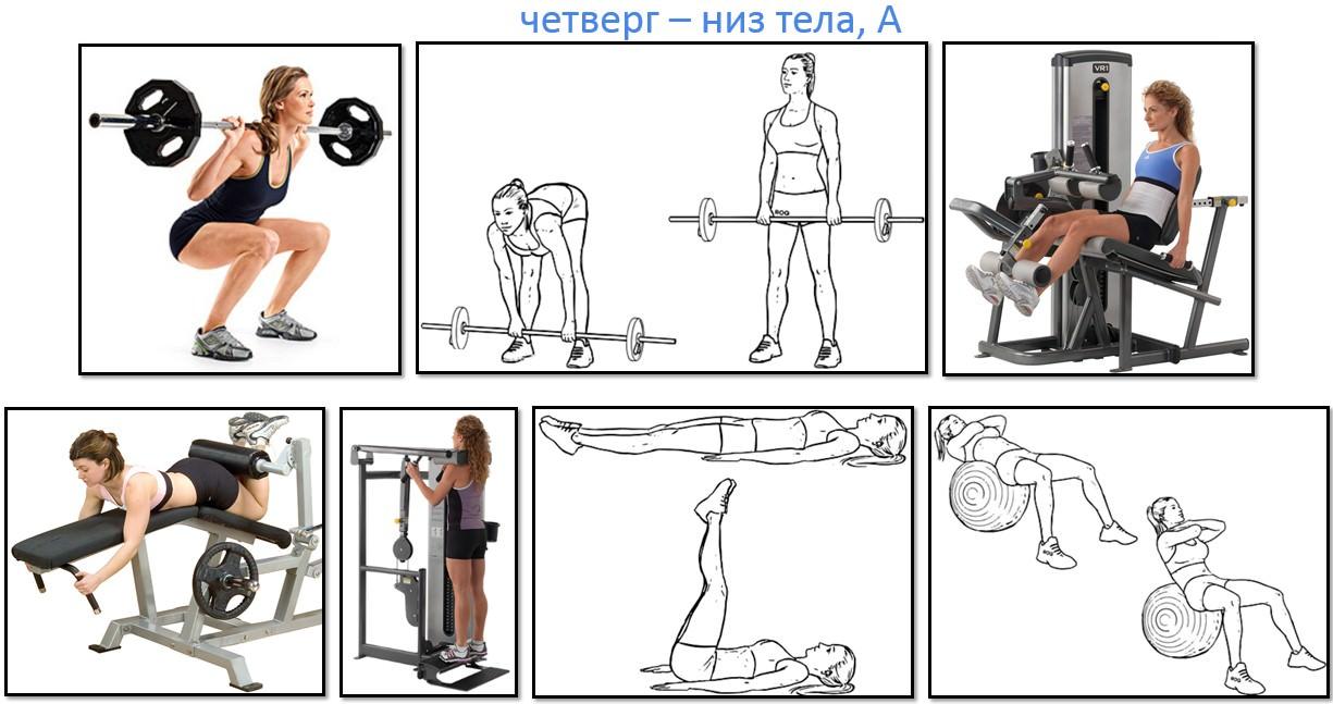Программа тренировок для девушек, низ тела А