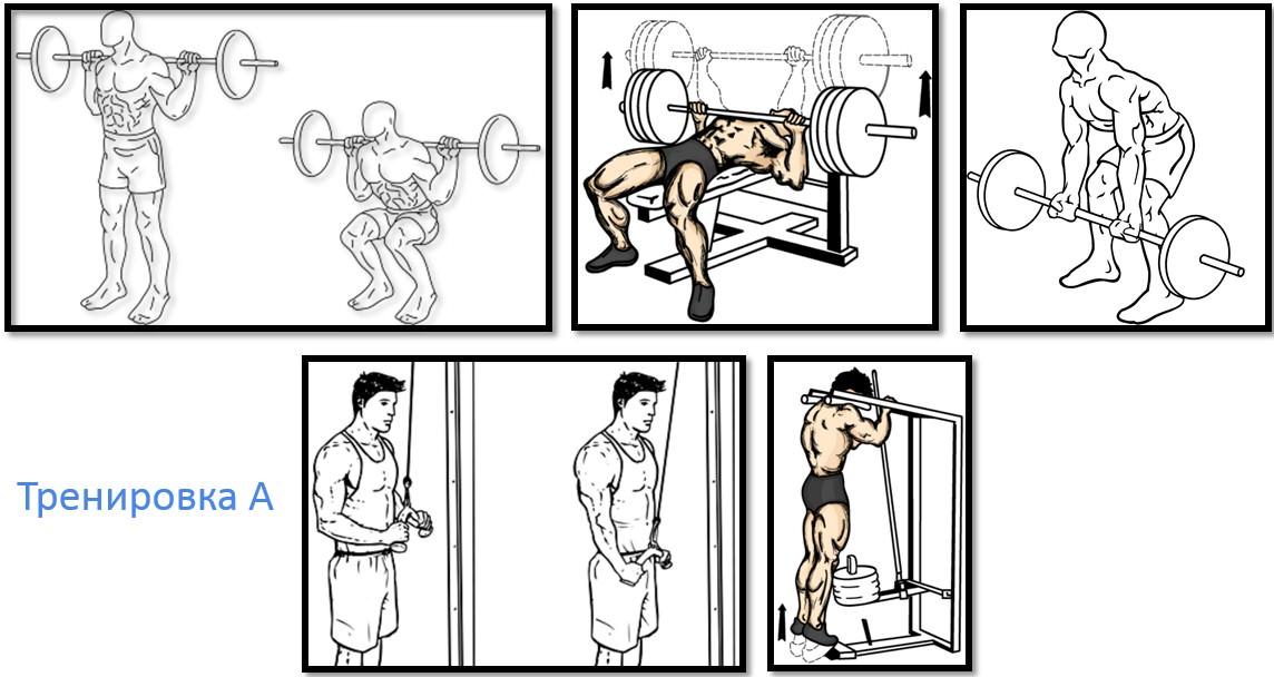 Фитнес программа для начинающих