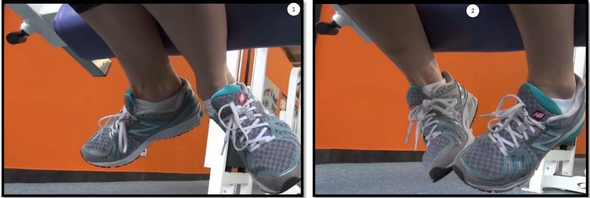 Сгибание ног лежа положение ступней