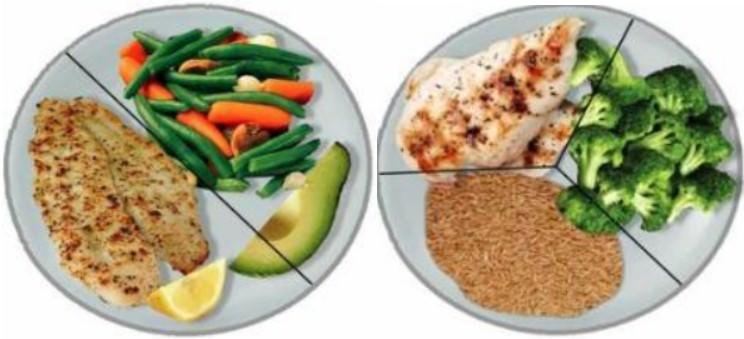 Тарелка соотношение белков, жиров и углеводов