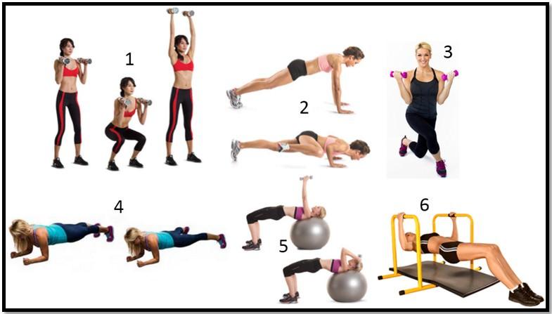 Фитнес Программа Для Похудения В Тренажерном Зале