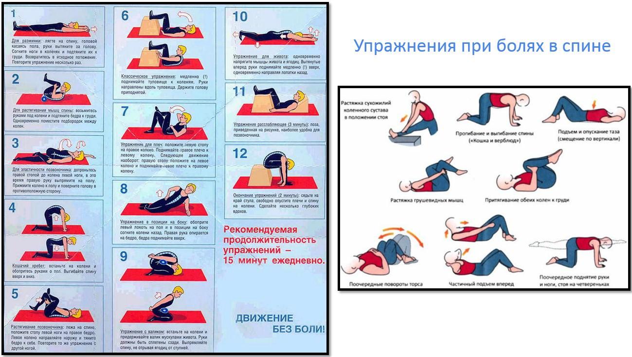 105Упражнения на пресс без нагрузки на поясницу