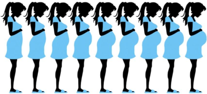 Беременность по месяцам в картинках