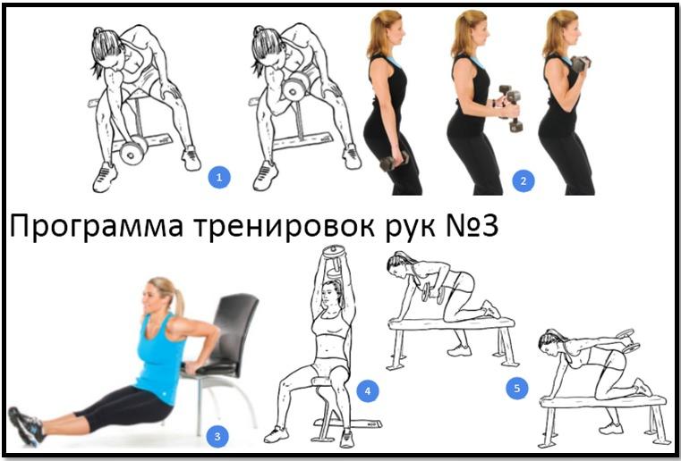 программа тренировок плечи и спина девушки