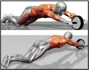 Упражнение ролик для пресса мышцы