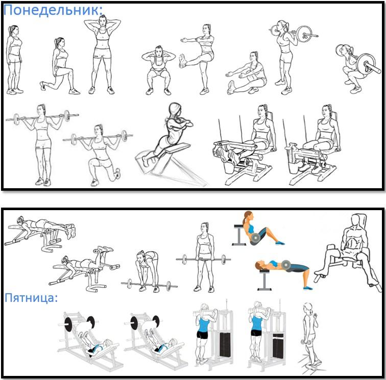 Программа тренировок ног №1 упражнения