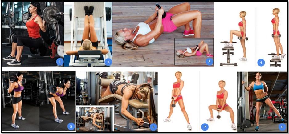 Программа тренировок ног №2 упражнения