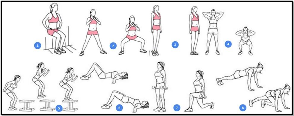 Программа тренировок ног №3