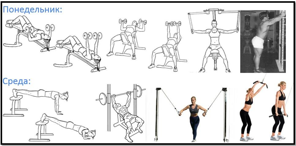 Программа тренировок груди №3 атлас упражнений
