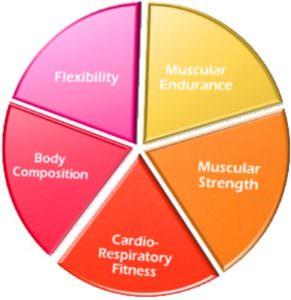 5 компоненов фитнеса