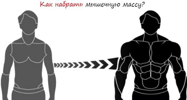 Как набрать мышечную массу лого