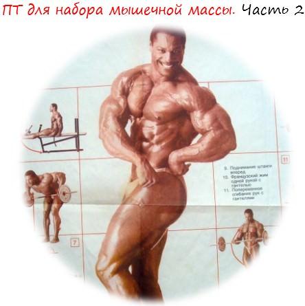 ПТ для набора мышечной массы лого 2