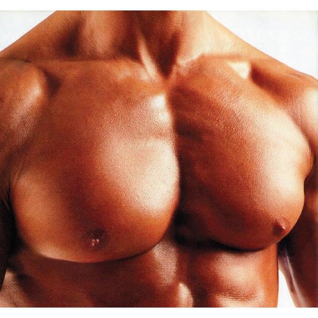 грудные мышцы части тела