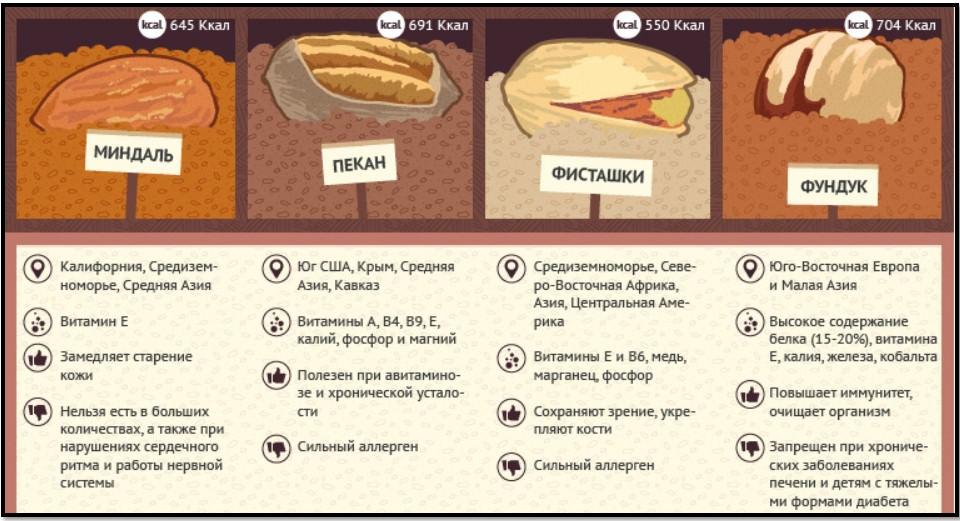 орехи, памятка 3