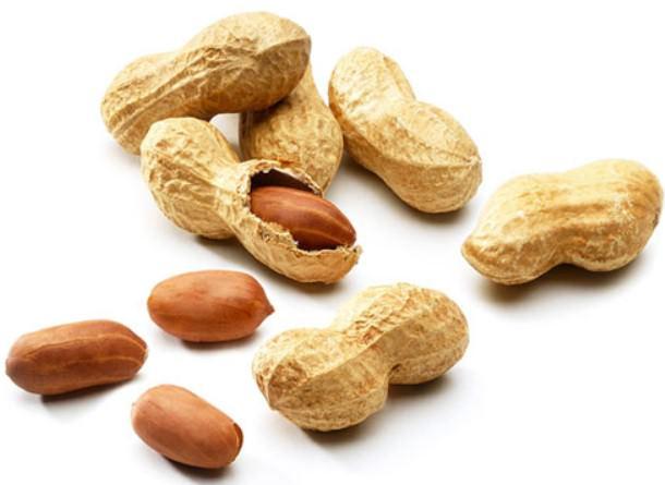 Употреблять какие орехи луше для бодибилдинга