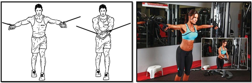 упражнение кроссовер, техника выполнения