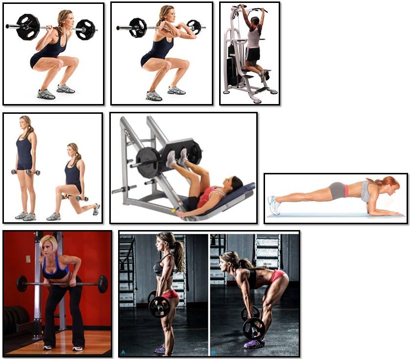 базовые упражнения для девушки для набора веса