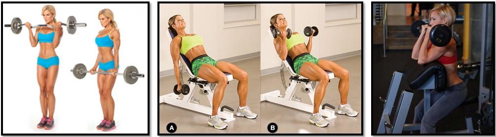 упражнения для девушки на бицепс