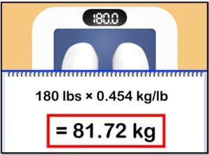 Как определить скорость метаболизма, вес