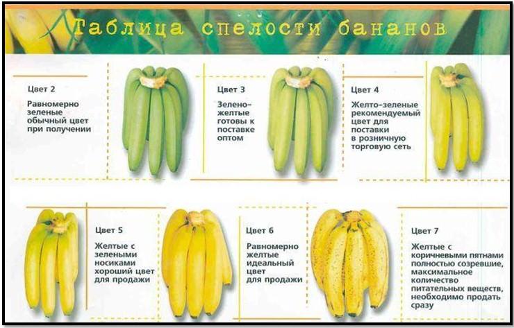 Как сделать так чтобы бананы созрели