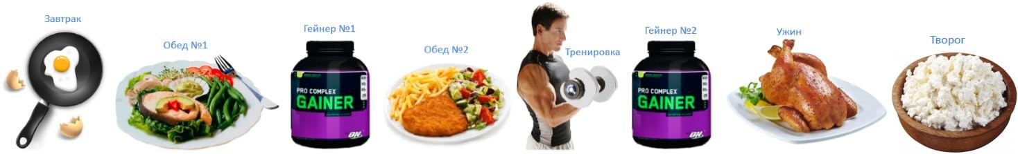 включение гейнера в режим питания