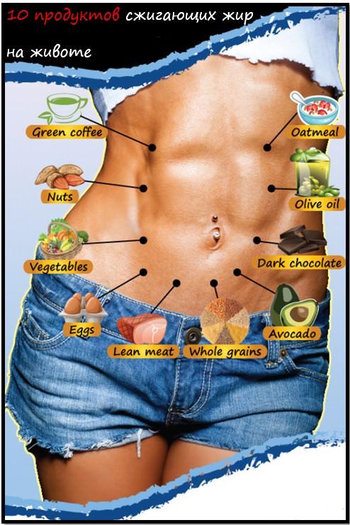 10 лучших продуктов сжигающих жир на животе