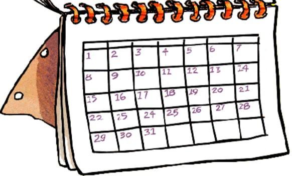 семидневный план по ускорению метаболизма