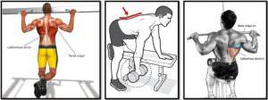 Лучшие упражнения на широчайшие