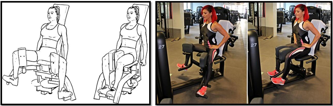 Как правильно раздвигать ноги