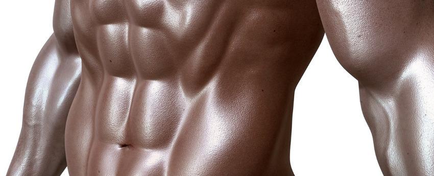 press muscle