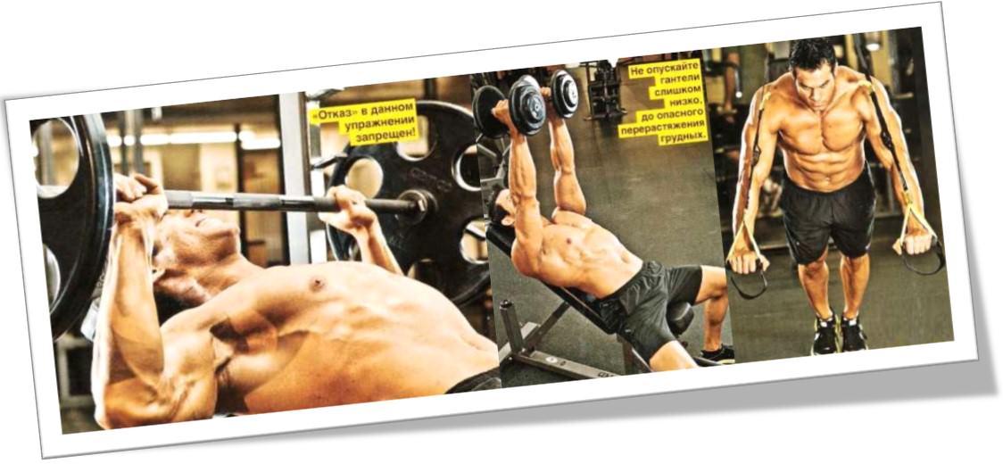 Программа тренинга грудных без жима лежа горизонтально