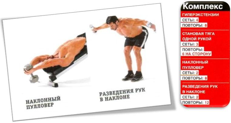 Как накачать спину, комплекс упражнений