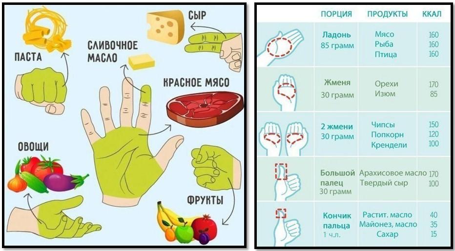 Как с помощью ладони измерить размер порции