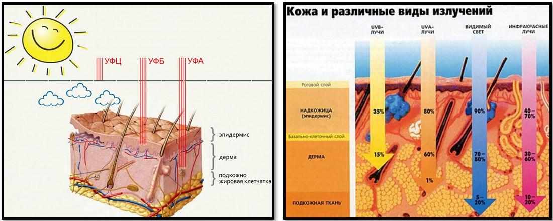 виды излучений и воздействия на кожу