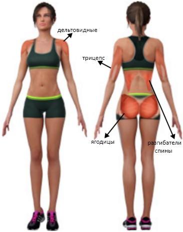 Упражнение пожарный гидрант мышцы