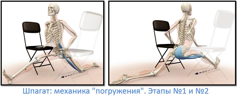Как сесть на шпагат, мехника, этапы 1 и 2