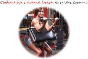 Sgibaniya-ruk-s-nizhnim-blokom-na-skame-Skotta-logo-300x200 Сгибания рук с нижним блоком на скамье Скотта лого