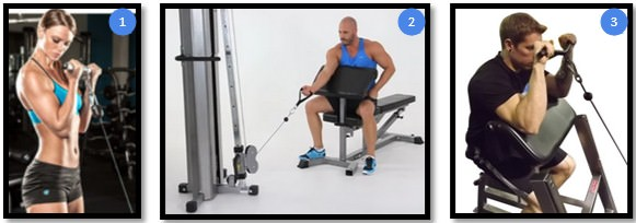 Сгибания рук с нижним блоком на скамье Скотта вариации