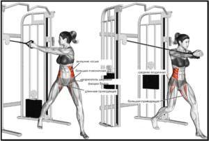 Упражнение дровосек мышцы