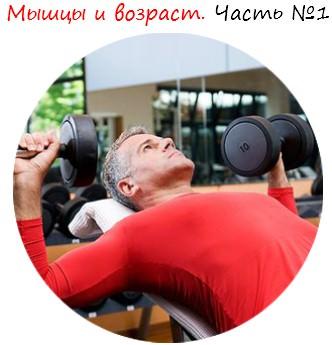 Мышцы и возраст. Часть №1 лого