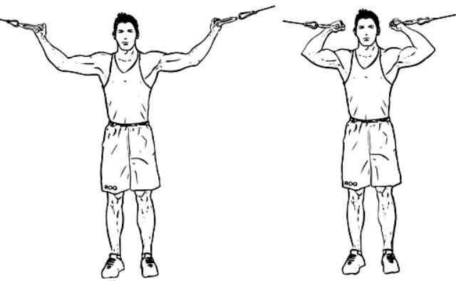 Сгибание рук на бицепс над головой на верхнем блоке техника выполнения