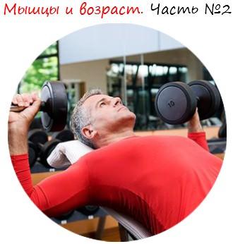 Мышцы и возраст. Часть №2 лого
