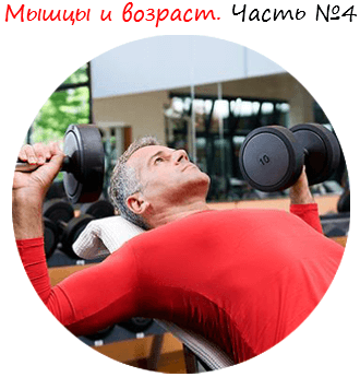Мышцы и возраст. Часть №4 лого