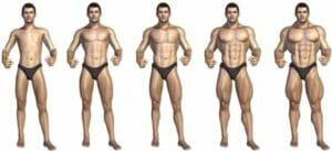 Процесс роста мышц