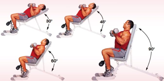 тренировка бицепса только на скамье под углом вверх