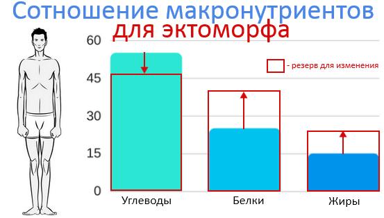 Эктоморф. Соотношение БЖУ